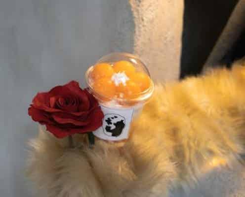 【大阪】もふもふクマの手からスイーツが…!? 斬新なテイクアウトカフェが誕生