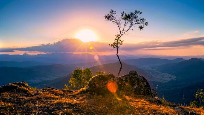 ゴールドコーストの定番観光スポット「ラミントン国立公園」(提供画像)