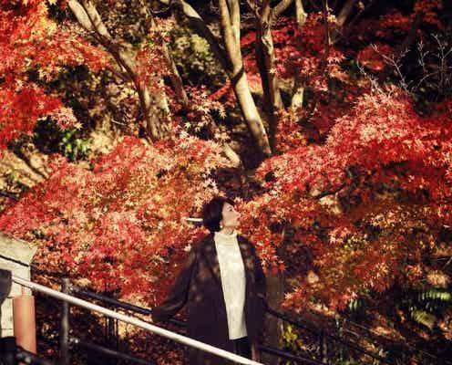 日本最大級のハーブ園で優雅に紅葉を堪能!神戸・六甲山脈を望む空中散歩も満喫。紅葉の見頃は11月上旬から