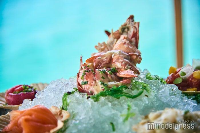新鮮な魚介類はワインとも好相性(C)モデルプレス