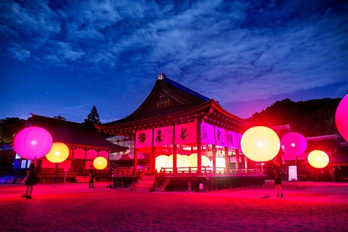 呼応する球体 – 下鴨神社 糺の森/画像提供:チームラボ