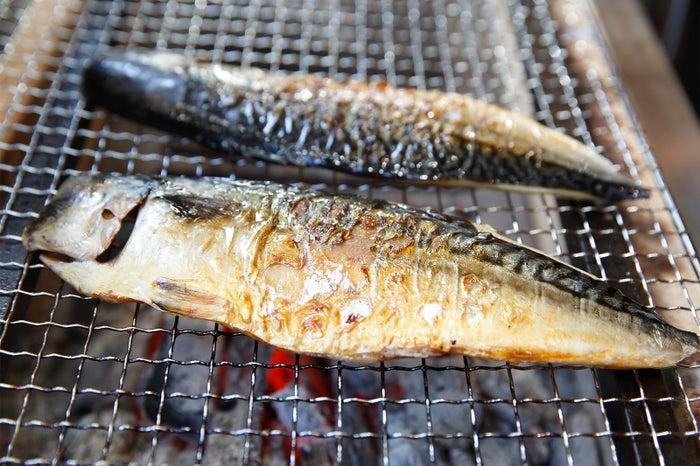 もの凄い鯖を熟成漬け汁に漬け込み/画像提供:TONTON