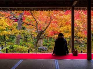 本当は内緒にしたい!紅葉の見ごろに訪れるべき京都の絶景スポット<5選>