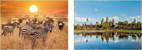 タンザニア、カンボジア/画像提供:AAE Japan