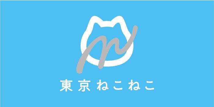 東京ねこねこ/画像提供:オールハーツ・カンパニー