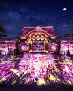 京都「二条城桜まつり2019」演出エリアが過去最大に、花見アートが世界遺産彩る