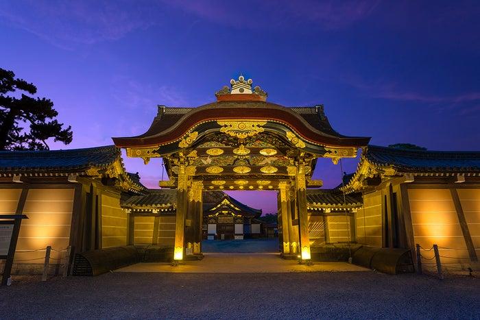 秋季特別ライトアップ FLOWERS BY NAKED 2018 ー京都・二条城ー/画像提供:株式会社ネイキッド