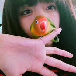 モデルプレス - 【美女とペット】池田エライザとキエリボタンインコ「ぴじょん」のラブな関係がたまらない