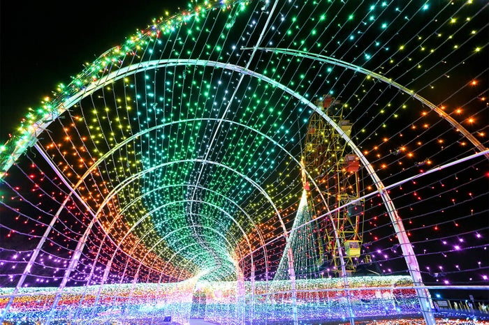 虹のトンネル/画像提供:東京ドイツ村
