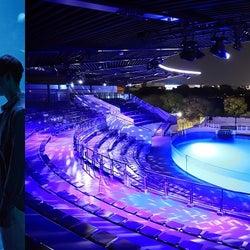 京都水族館「夜のすいぞくかん」幻想的な雰囲気と夜のいきものの姿を観察
