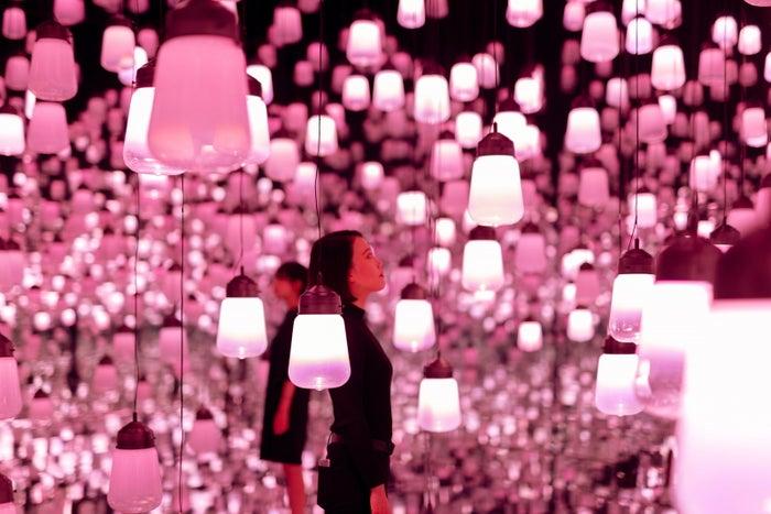 呼応するランプの森 – ワンストローク、桜/画像提供:チームラボ