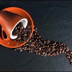 コーヒー豆の正しい保存方法とは?選び方や長持ちさせる秘訣を徹底解説