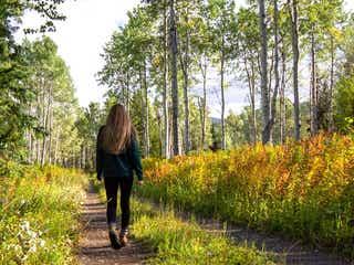 朝の散歩は何時からするのが良い?心にも体にも嬉しいメリットが盛り沢山