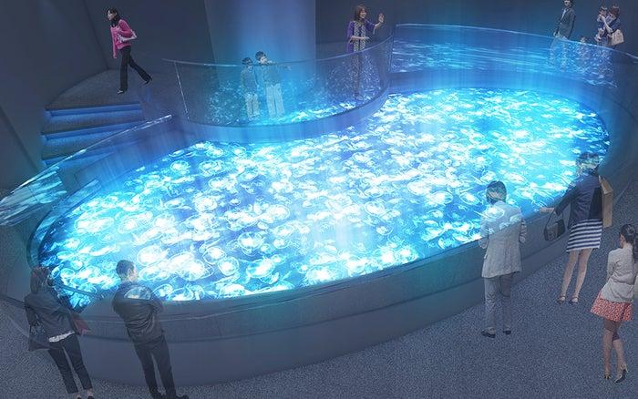 すみだ水族館リニューアル後の新クラゲ展示エリア(イメージ)/画像提供:すみだ水族館