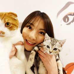 知英と愛猫「レオン」(左)と「ニニ」(右)/画像提供:所属事務所