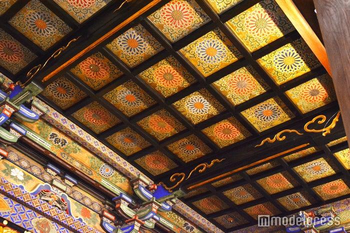 御影堂内の見事な花の天井画(C)モデルプレス