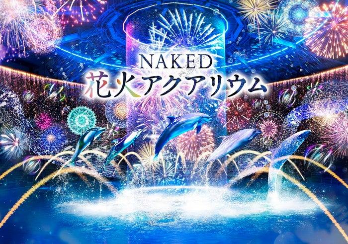 NAKED 花火アクアリウム/画像提供:横浜八景島