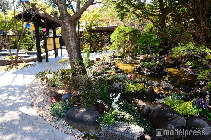 リニューアルで新たに庭園を整備(写真右下)(C)モデルプレス