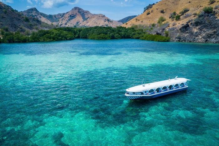 クジラをイメージした可愛いボート「ラコ タカ」/底はガラス張りで海中の様子がくっきり(提供写真)