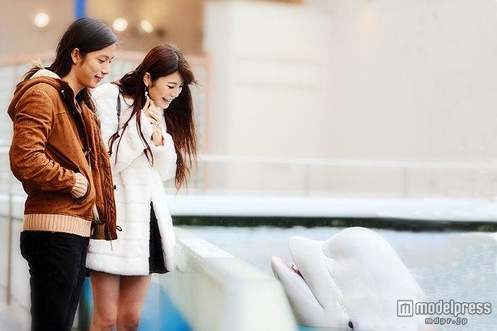 聖南&大輝カップル、横浜・八景島シーパラダイスでラブラブデート【モデルプレス】
