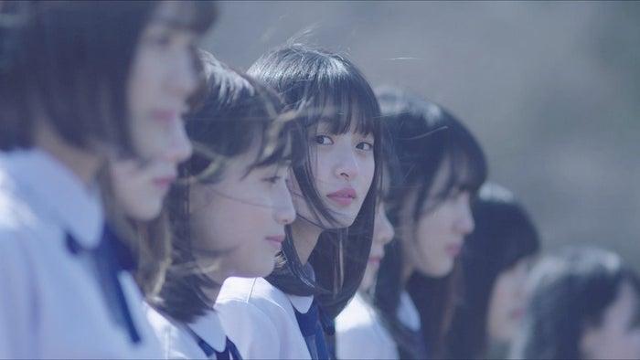 乃木坂46「4番目の光」MVより(提供画像)