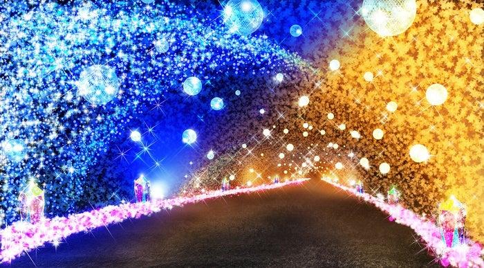 光のトンネル/画像提供:御殿場高原ビール