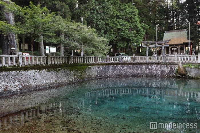 日本の名水百選に認定されている「別府弁天池」(C)モデルプレス