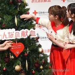 オーナメントを飾る齋藤飛鳥、飾る場所に迷う堀未央奈、与田祐希 (C)モデルプレス