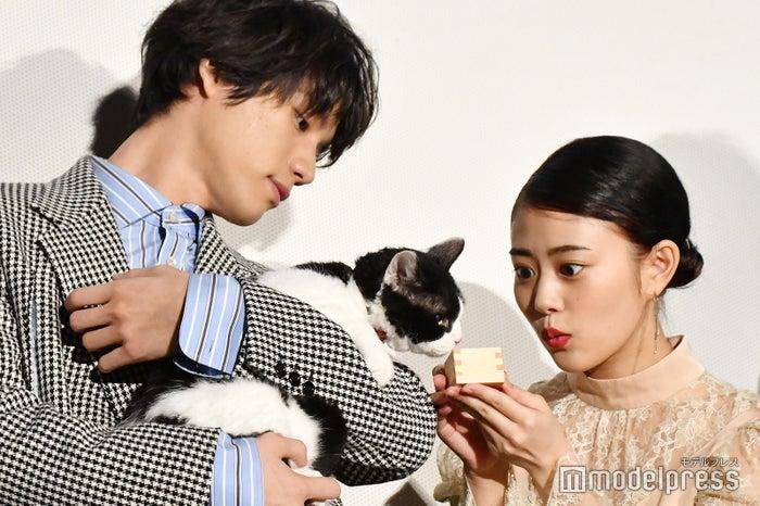 福士蒼汰と主演猫のナナと高畑充希 (C)モデルプレス