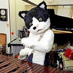 あのミュージシャンの影響? 猫の名前、総合1位は「ムギ」