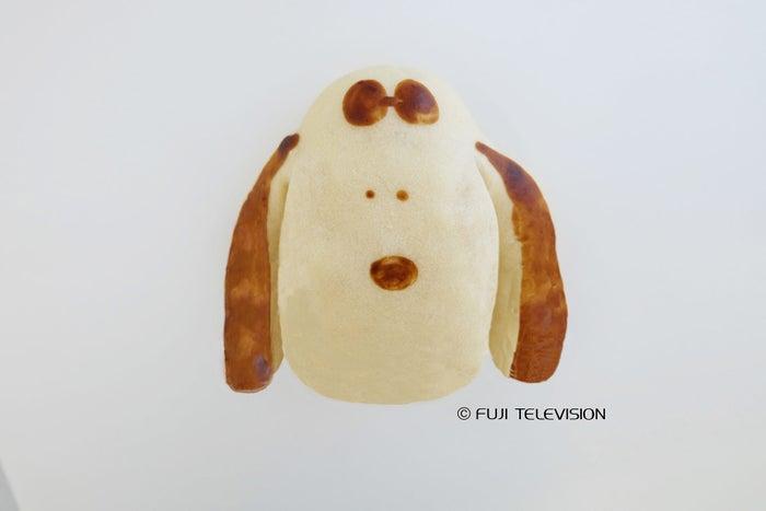 小犬のラ二ちゃんパン/画像提供:フジテレビジョン