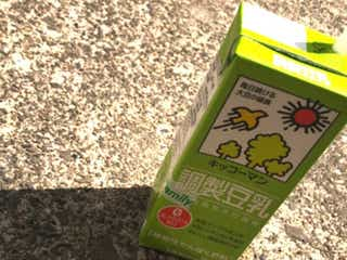キッコーマン豆乳飲料で1番好きな味ランキング