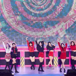 "TWICE「TWICE 1st ARENA TOUR 2018 ""BDZ""」より(撮影:撮影:田中聖太郎写真事務所)"