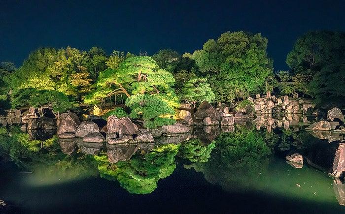 特別名勝 二の丸庭園 ライトアップ /画像提供:ネイキッド