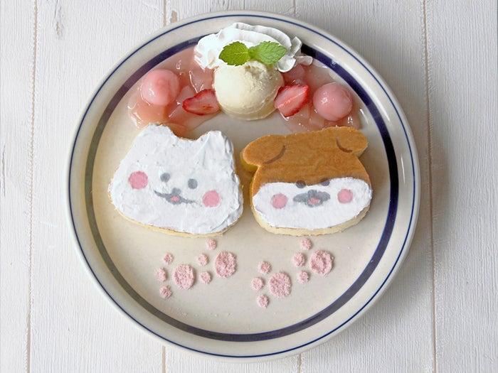 ほわころちゃんとしばころちゃんのなかよしパンケーキ1,300円/画像提供:東急ハンズ