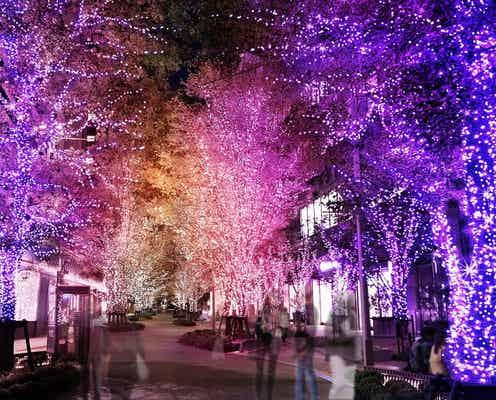 """東京・日比谷の2021年イルミネーション、""""魔法のような""""グラデーションカラーの彩り"""
