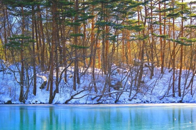 裏磐梯(うらばんだい)の冬の風景