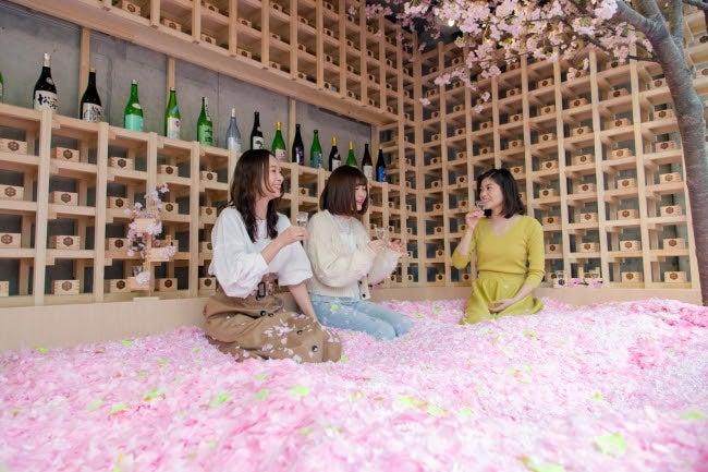東京・表参道での桜プールの様子(提供画像)