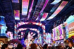 【ディズニー・クリスマス開幕】TDL「セレブレーションストリート」期間限定バージョンに シンデレラ城裏には生木ツリー