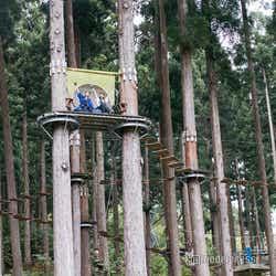 樹の上には絶景を楽しめるソファ席やハンモックが(C)モデルプレス