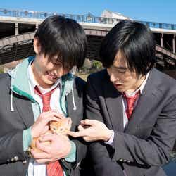 モデルプレス - 【独占動画】上遠野太洸&西川俊介にカップル疑惑?なでなで&じゃれあう姿がカワイイ<覚悟はいいかそこの女子。>
