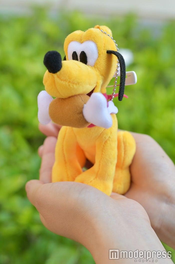 ぬいぐるみバッジ¥1,700(C)モデルプレス(C)Disney