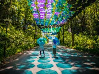 埼玉メッツァで「アンブレラスカイ」カラフルな傘約2,000本で夏空彩る