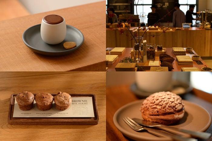 ダンデライオン・チョコレート(C)モデルプレス