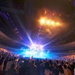 「バズリズム LIVE 2019」/PHOTO:山内洋枝(提供写真)