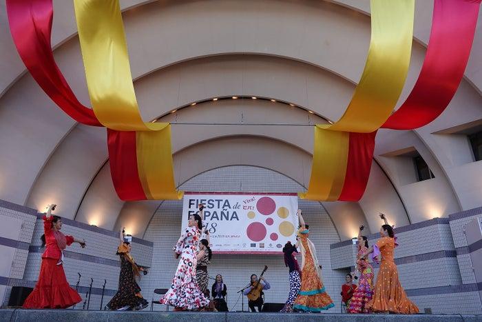 フラメンコなどパフォーマンスも/提供画像:フィエスタ・デ・エスパーニャ実行委員会