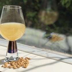 白いコーヒー豆飲料が登場!ハーブとブレンドした赤黄青色も揃える。名古屋で試飲可