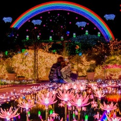 あしかがフラワーパークで450万球イルミ「Flower Fantasy」開幕、2018年新作も煌めき放つ