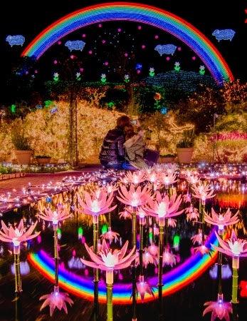 Flower Fantasy/画像提供:足利フラワーリゾート