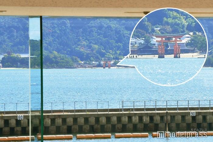 観戦スペースから厳島神社の大鳥居が望めます(C)モデルプレス